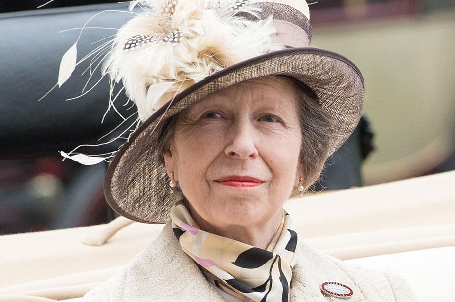 Princess Anne (Photograph: Samir Hussein/WireImage/Getty Images)