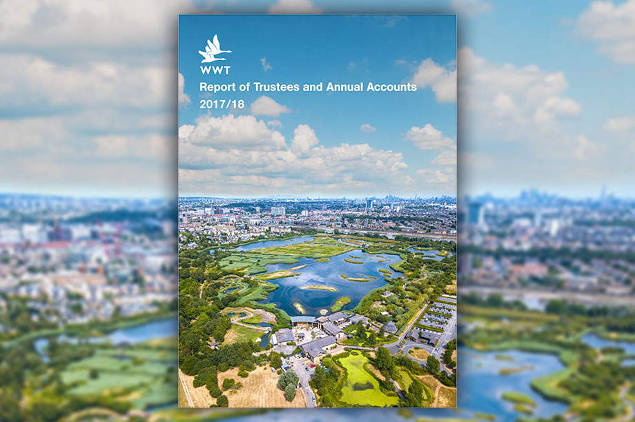 The WWT's annual report and accounts