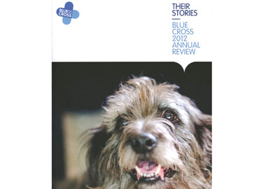 Blue Cross's annual review