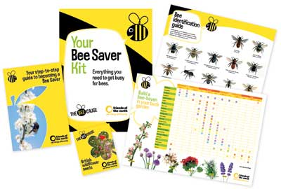 The Bee Cause is promoted across multiple media channels