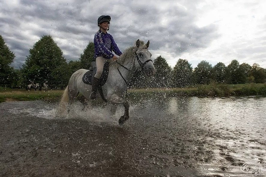 Riding in Bushy Park, Teddington (Photograph: Max Ellis Photography/Park Lane Stables)
