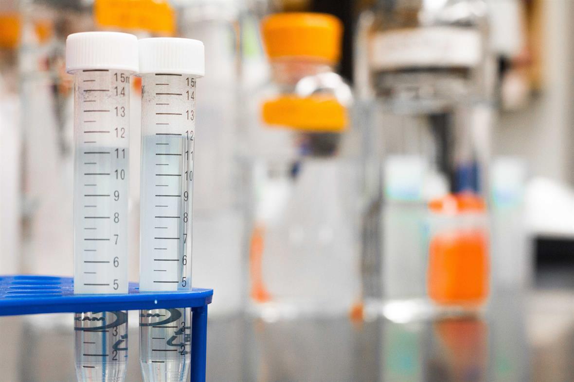 Medical research (Photograph: Martin Lopez/Pexels)