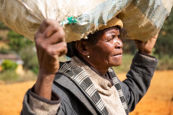 Juliette carrying a sack of wood on her head, Manjakandriana, Madagascar (Photograph: WaterAid/Ernest Randriarimalala)
