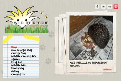 Wildlife Rescue Sanctuaries