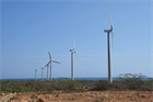 Insight report: Latin American wind sector hit by Covid-19 and debt
