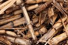 European Commission backs €320m for new biomass-fired projects