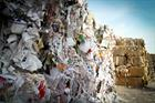 Geminor targets French EfW and waste wood market