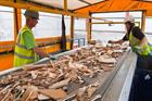 WRA considering legal action over waste wood changes