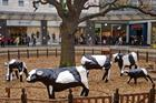 Milton Keynes: It's not all concrete cows and roundabouts, says PR team in 50th anniversary push
