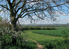 South Northamptonshire approves plans for 1,900-home urban extension