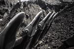 Russian coal-mining firm to be powered by wind