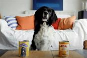 Like brands, only shaggier: canine Aldi remake among ITV competition winners