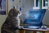 Whiskas introduces purrst-graduate counterpart to Kitten Kollege