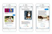 Mars' Perfect Fit launches chatbot for tailored petcare advice