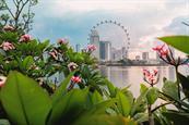 Bompas & Parr creates immersive garden for Singapore tourist board