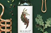 Diageo's Seedlip to stage culinary experience