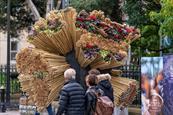 BBC creates biodiversity installation to launch natural-history series