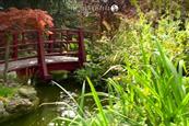 Kensington Roof Gardens closes citing profit challenges