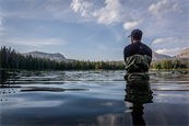 Why marketing and fishing are more similar than you first thought