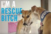 """Battersea """"Rescue is our favourite breed"""" by FCB Inferno"""