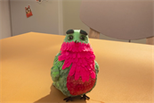 "TopCashback ""Hummingbird"" by Now"