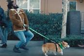 Pereira O'Dell unloads sassy 'Walk It Out' campaign for dog-sitting service Rover