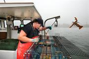 Blog: Lobster offers Europe a cautionary tale on trade and the environment