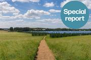 Cleve Hill Solar Park: The major infrastructure project that aims to deliver 65% net gain