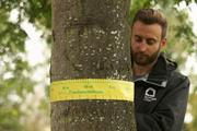 The debrief: How a tree mapping project is making the case for greening Manchester