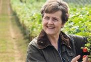 MEP Anthea McIntyre: needless EU product ban would unfairly hit farmers