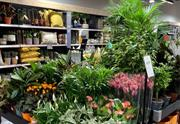 New Little Dobbies garden centre to open