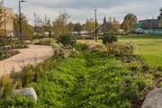 Report looks to increase uptake of nature-based solutions in urban spaces