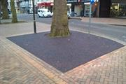 Town centre trees benefit from flexible paving
