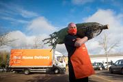 B&Q launches Christmas tree home delivery