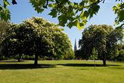 Minister pledges £500,000 towards cross-governmental parks action group