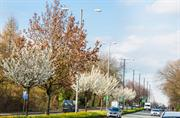 Forestry Commission awards final round of £10m Urban Tree Challenge Fund