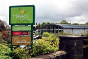 Hayes Garden World sees Google artificial Christmas tree ecommerce demand