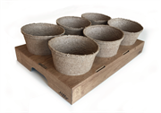 Plastic plant pot cardboard solution launched
