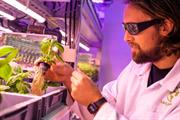 """""""Aeroponic"""" indoor farming tech company secures £2.35m investment"""