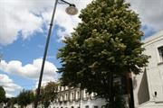 """LTOA rejects Defra's """"disproportionate"""" street tree protection plans"""