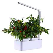 Crest/Plantpak intrroduction marks move towards home gardener hydroponics
