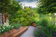Society of Garden Designers' newest sustainable design award open to everybody