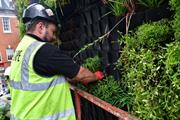 Scotscape and Untitled Practice design and build 76sqm living wall in London