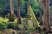 Landscape design competitions launched for Highgate Cemetery