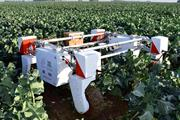 """Lincoln to host """"global centre of excellence"""" in agri-robotics research"""