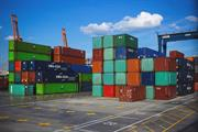 Plant imports could be caught up in Brexit ports delays - warning