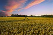 Open Spaces Society criticises compliance plans for monitoring agricultural grants