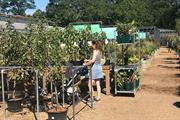 Garden centres sales level with 2020 in August