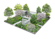 Hillier Chelsea Flower Show garden design revealed