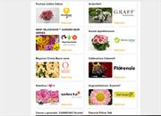 Studio FlowerTrials online event to present dozens of new bedding plant varieties